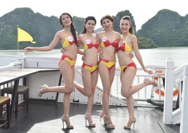 Dan thi sinh HHVN khoe sac trong trang phuc bikini Vietjet hinh anh 6