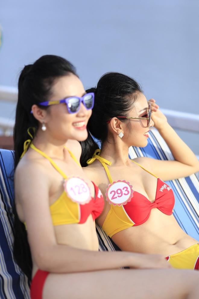Dan thi sinh HHVN khoe sac trong trang phuc bikini Vietjet hinh anh 13
