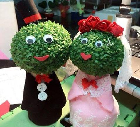 250.000 dong/cap cay mini hinh co dau chu re dip Valentine hinh anh