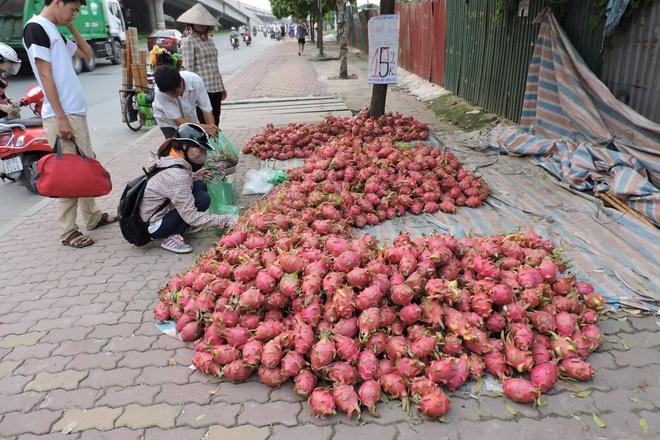 Nong san Viet bi 'cuop' mat thi truong hinh anh