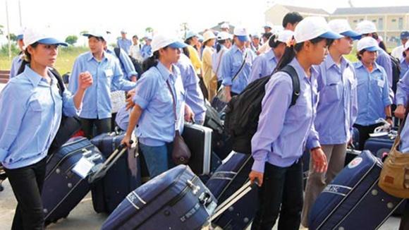 Lao dong Viet tai Dai Loan dang gap kho hinh anh
