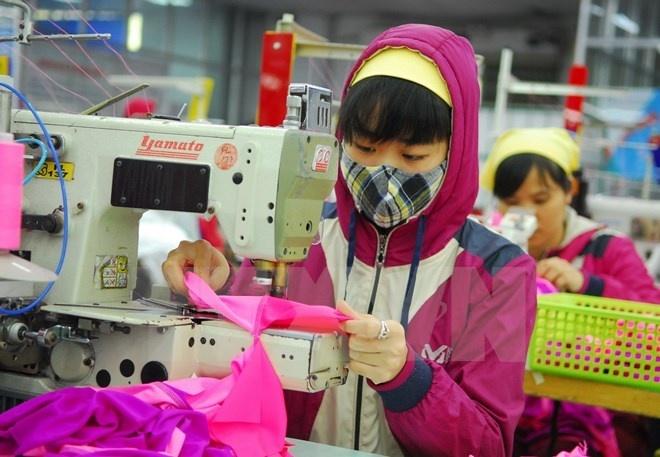 Bao Anh: TPP giup Viet Nam day manh xuat khau hang det may hinh anh 1