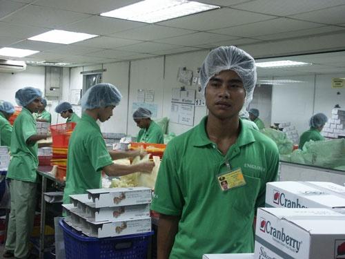 Đi xuất khẩu lao động qua kênh chính thức, lao động Việt Nam có việc làm ổn định tại Malaysia.