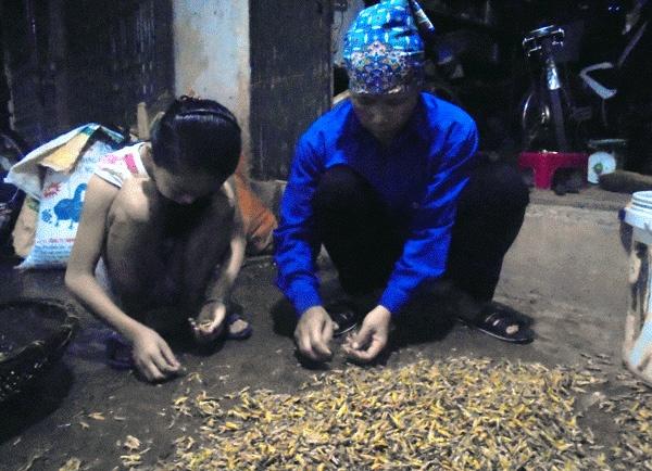 Lang Nghe Rang Tam Chau Chau Doc Nhat Viet Nam Hinh Anh 3