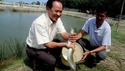 Se xuat khau ca chinh Viet Nam hinh anh