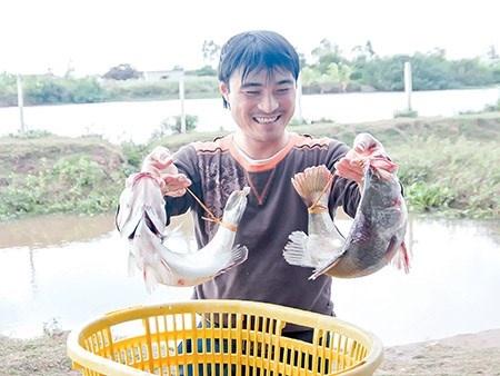 Khong chi la ty phu ca vuoc hinh anh 1 Anh Trương Văn Trị với giống cá do mình lai tạo.