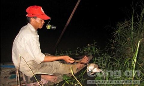 Nghe doc o mien Tay hinh anh 1 Bơi xuồng săn chuột đồng tồn tại hơn 40 năm tại xã Hòa Mỹ.