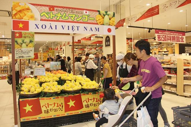 Dai su Viet Nam quang ba xoai cat chu o Nhat hinh anh 1 Xoài cát chu được quảng bá tại Nhật.