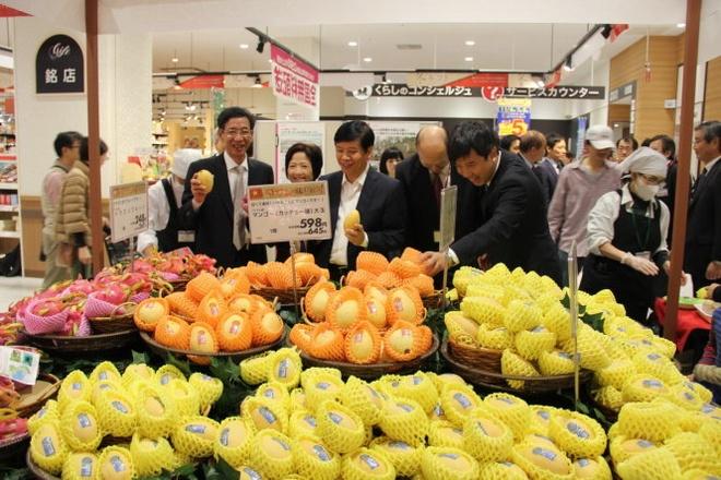 Dai su Viet Nam quang ba xoai cat chu o Nhat hinh anh 2 Xoài cát chu được quảng bá tại Nhật.