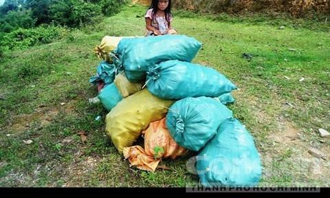 Thanh Hoa: Nong dan bi bang nhom ep ban nong san gia re hinh anh