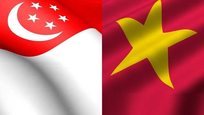 Lam sau sac quan he chien luoc: Truong hop VN - Singapore hinh anh
