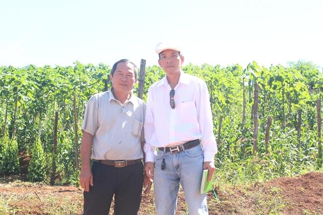 Dong vang tren cao nguyen: Nhung nong dan ty phu hinh anh 1 Tác giả (đội mũ trắng) bên nông dân Nguyễn Thanh Tịnh... Đọc thêm tại: http://nongnghiep.vn/dong-vang-tren-cao-nguyen-nhung-nong-dan-ty-phu-post153527.html | NongNghiep.vn