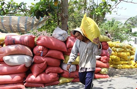 Thai Lan xa kho gao khong lo, gao Viet 'nin tho' hinh anh 1