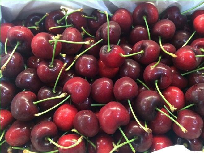 Cherry My nhap khau phoi ca ngay duoi troi nang van tuoi hinh anh