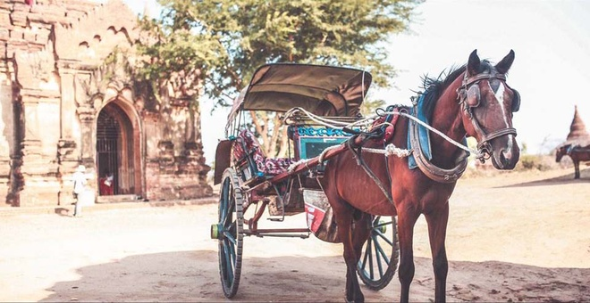 Co do Bagan huyen bi o Myanmar hinh anh 9