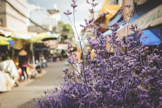 Sac mau binh di tai cho hoa lon nhat Sai Gon hinh anh