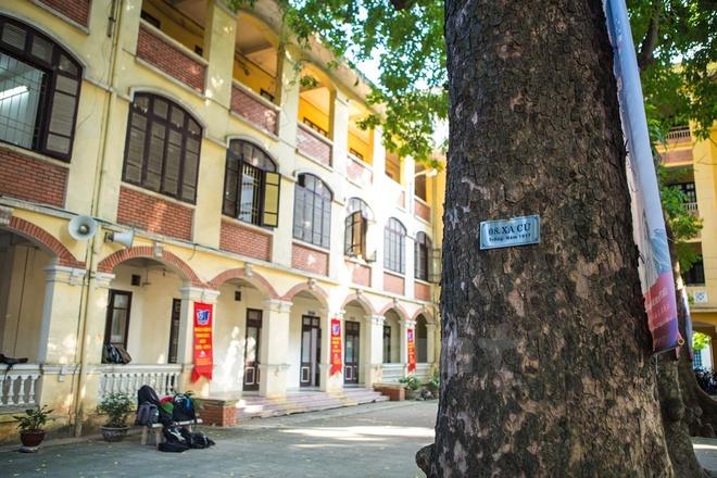 Can canh nhung ngoi truong pho thong tram nam tuoi o Ha Noi hinh anh 6 Tên tuổi của trường có thể sánh ngang với các trường cấp 3 danh tiếng khác như trường Bưởi, trường Đồng Khánh. Bước sang tuổi 92, ngôi trường vẫn giữ được tầm vóc là một trong những trường Trung học phổ thông hàng đầu Hà Nội.
