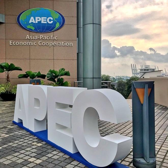 Trac nghiem: Ban co phai 'chuyen gia' ve APEC? hinh anh 7