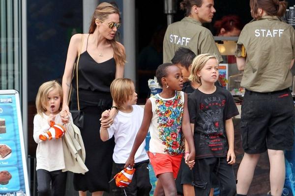 Cac con giup Angelina Jolie len ke hoach dam cuoi hinh anh
