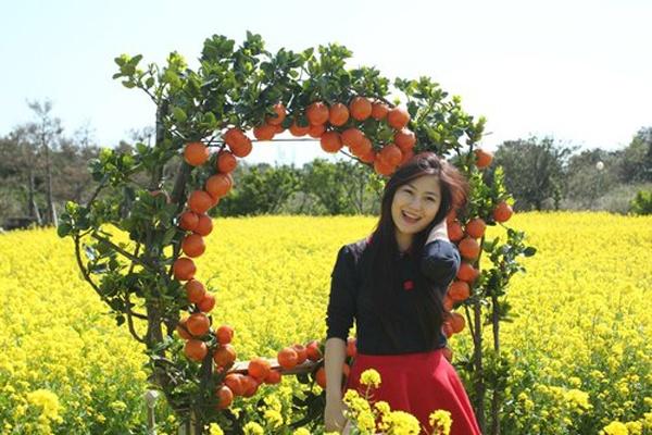 Cũng vào tháng 3 năm ngoái, top 3 Giọng hát Việt mùa giải đầu tiên Hương Tràm, Đinh Hương và Xuân Nghi đến Jeju thăm thú. Hương Tràm tạo dáng ở vườn cam – một trong những cây trồng đặc trưng ở đây.