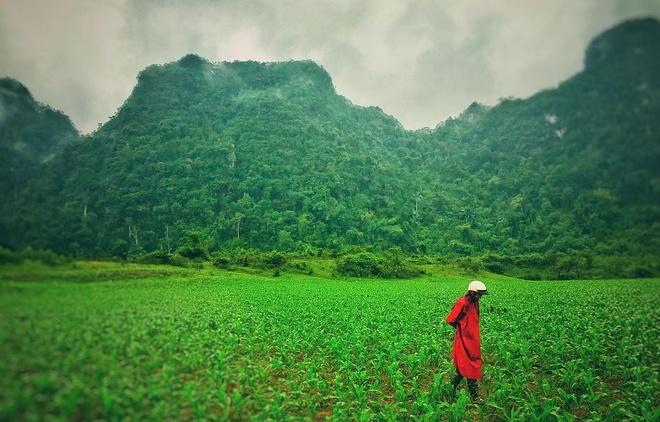 Sao 'Kong: Skull Island' khoe anh phong canh Quang Binh hinh anh 1