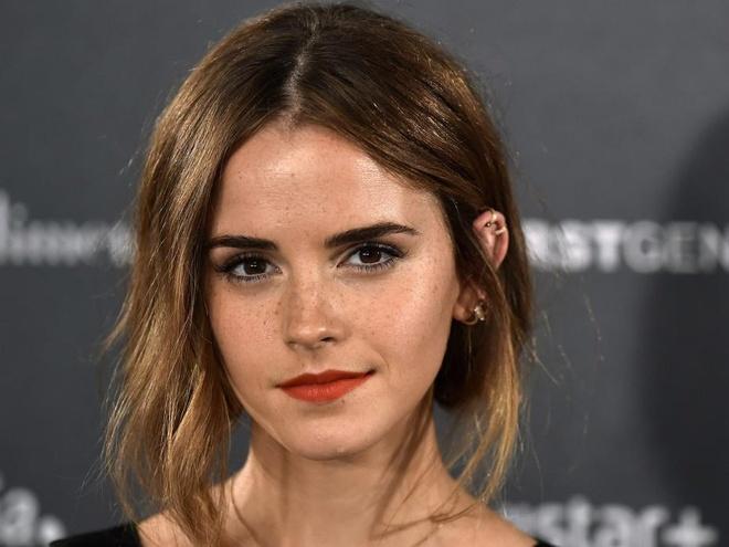 Emma Watson co ten trong Ho so Panama hinh anh