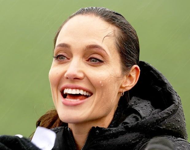 Angelina Jolie lam giao su thinh giang o dai hoc hinh anh 2