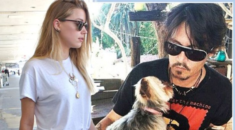 Johnny Depp tranh quyen nuoi cho cung voi vo tre hinh anh