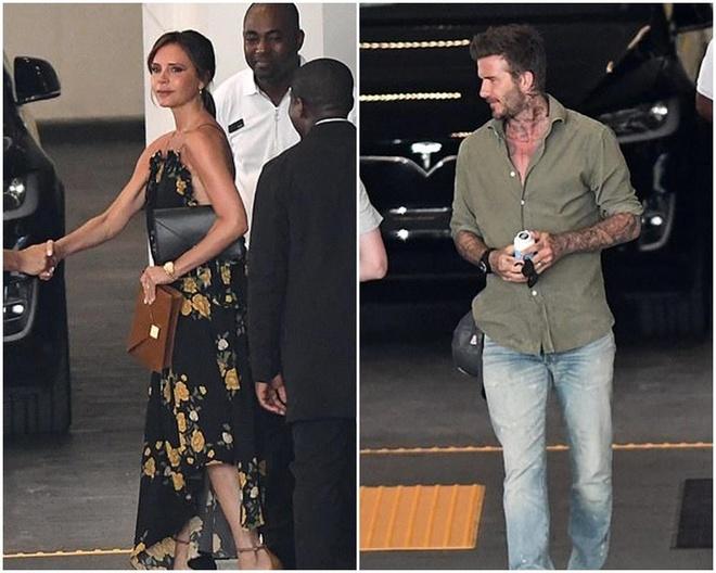 Harper Beckham xinh dep va sanh dieu khi di du lich cung gia dinh hinh anh 2