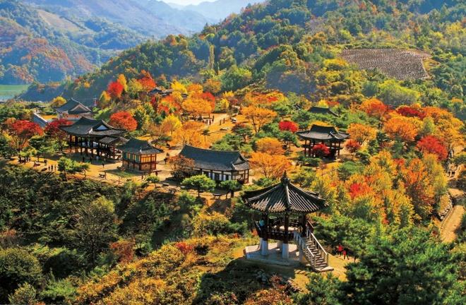 Vietjet Air ban ve may bay gia 0 dong di Han Quoc hinh anh 1 Khung cảnh mùa thu Hàn Quốc đầy lãng mạn với kiến trúc truyền thống thấp thoáng trong mùa lá đỏ.