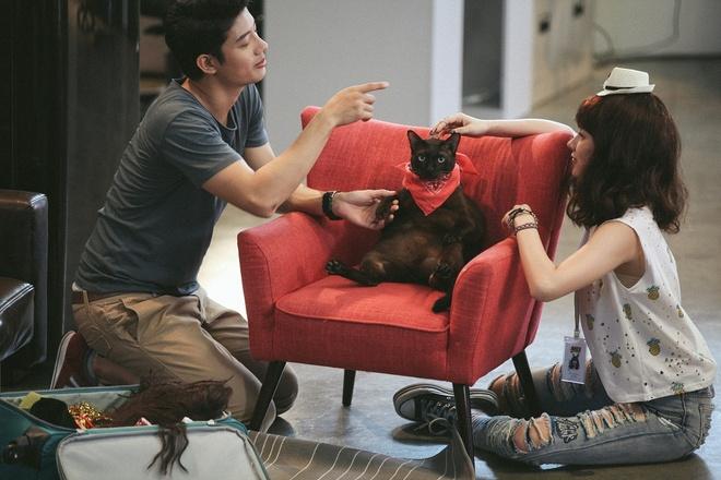 """Cặp đôi """"hoàn cảnh"""" với chú mèo Johnny"""