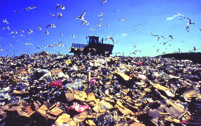Tai su dung bao bi, giai phap doanh nghiep bao ve moi truong hinh anh 2 Hạn chế rác thải bao bì góp phần giải quyết cuộc khủng hoảng rác thải toàn cầu.