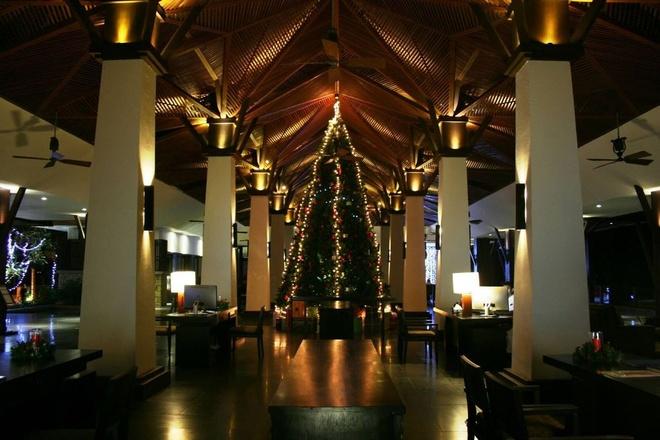 Don Giang sinh va nam moi tai Amiana Resort Nha Trang hinh anh 1