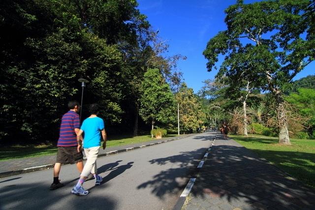 Ly do Penang lot top 10 thanh pho hap dan nhat hanh tinh hinh anh 3