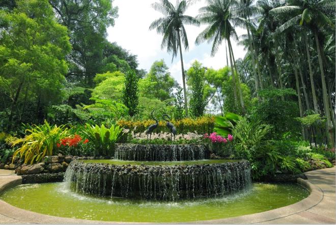 Singapore: Thoa long uoc mo tuoi tre hinh anh 2
