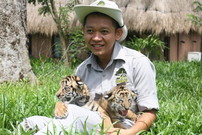 Hai cap ho con Bengal ra doi tai Vinpearl Safari Phu Quoc hinh anh 4
