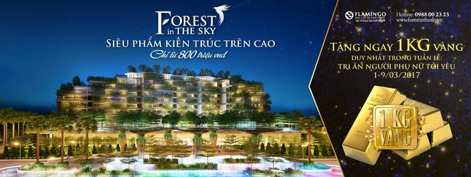 Forest In The Sky anh 4