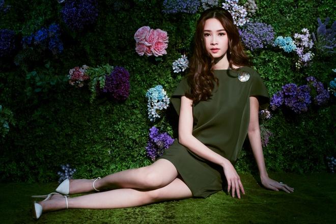 HH Dang Thu Thao tiep tuc lam dai su Elise 2017 trong BST da sac hoa hinh anh 7