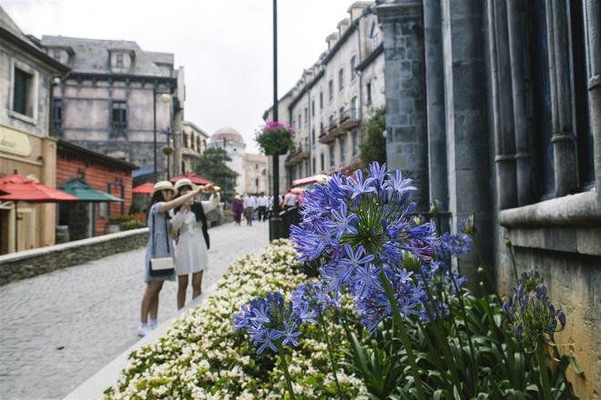 Sắc hoa rực rỡ tại Bà Nà Hills - Du lịch