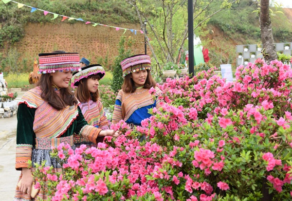 Muon hoa khoe sac tai Le hoi hoa do quyen Fansipan Legend hinh anh 1