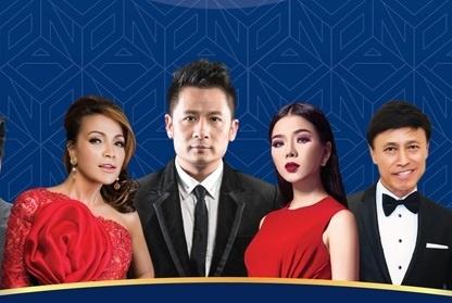 Dan sao Viet quy tu trong dem nhac 'Novaland Concert 2017' hinh anh