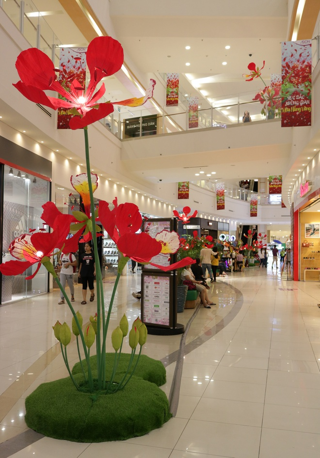 Gioi tre check-in voi hoa phuong khong lo o AEON Mall Tan Phu Celadon hinh anh 2