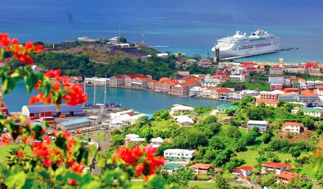 Nhap quoc tich My, Grenada theo dien dau tu hinh anh