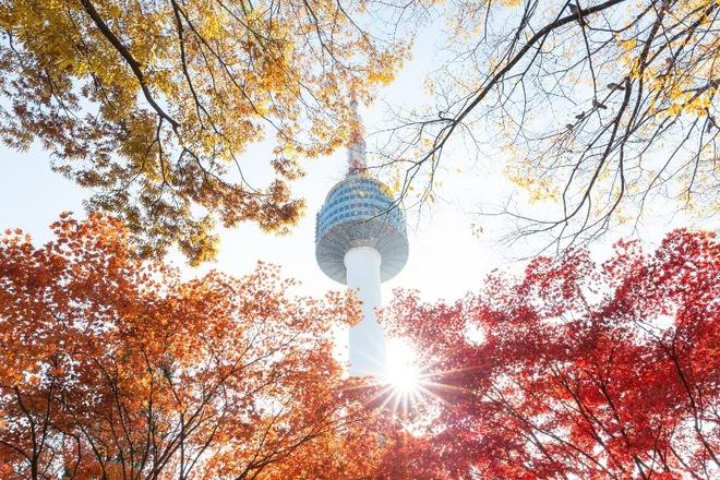 Kết quả hình ảnh cho Hàn Quốc mùa thu