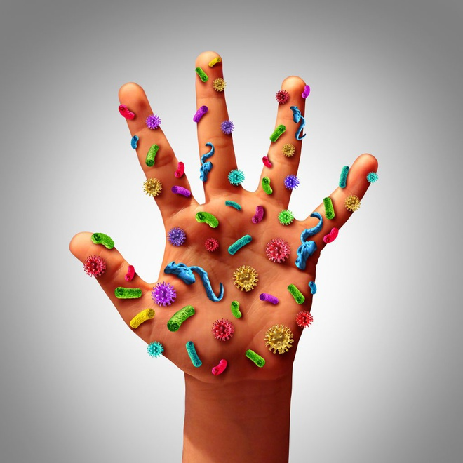 4,6 trieu vi khuan cu ngu tren 1 cm2 ban tay hinh anh 1