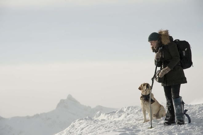 'The mountain between us': Cau chuyen sinh ton day... lang man hinh anh 3