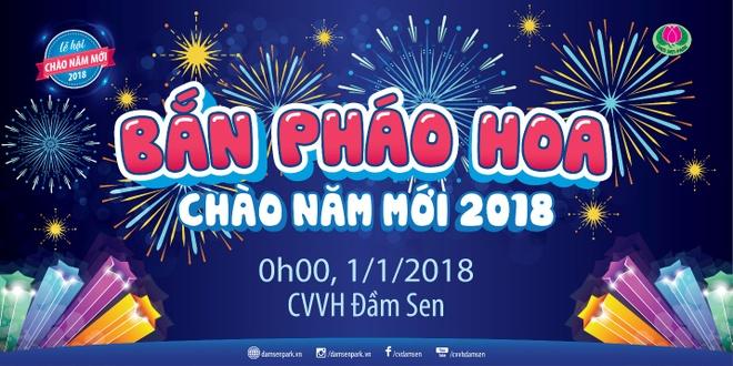 Nhung hoat dong hap dan chao Tet 2018 tai cong vien Dam Sen hinh anh 2