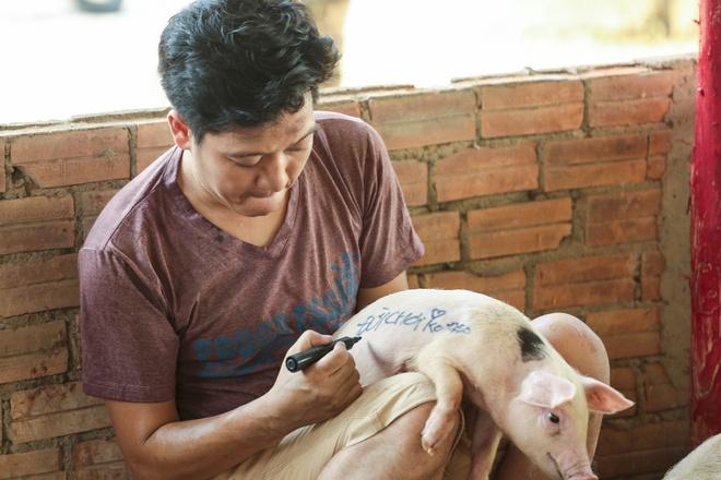 Truong Giang: 'Tet nay hay goi toi la Tung Heo' hinh anh