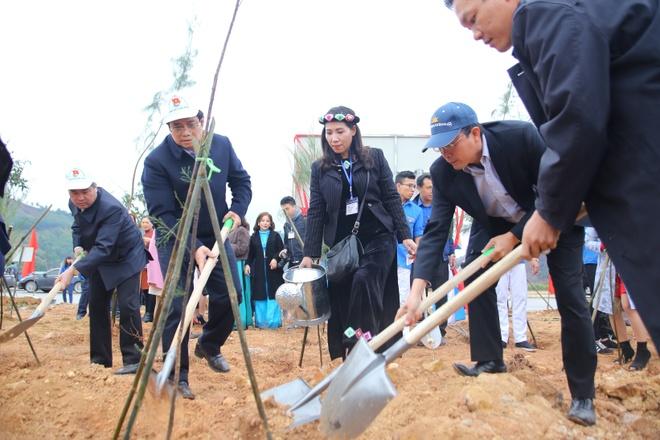 Quang Ninh trong 11.000 cay phi lao tao rung chan song hinh anh