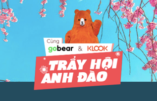 Co hoi du lich voi cuoc thi 'Cung GoBear, KLook tray hoi anh dao' hinh anh